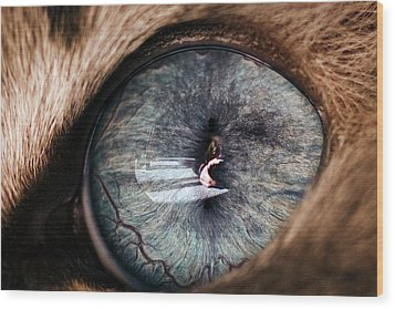 Self Portrait Through The Eyes Of Oliver Wood Print by Paul Madura