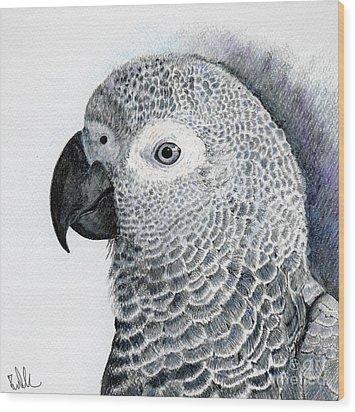Sensitive African Grey Wood Print by Barb Kirpluk