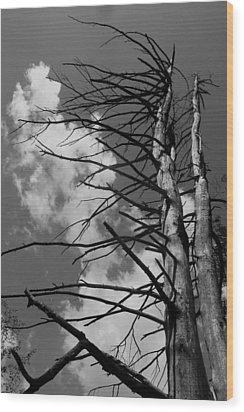 Sentry Wood Print
