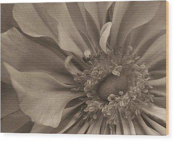 Sepia Floral Wood Print by Kristin Elmquist