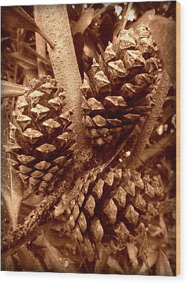Wood Print featuring the photograph Sepia Pine Cones Trio by Cindy Wright