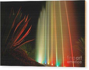 Serenade For Rainbow Wood Print by Erhan OZBIYIK