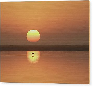 Serendipity Wood Print by Photo by Richard Lionberger