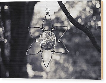 Wood Print featuring the photograph Serendipity by Sara Frank