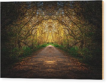 Serene Archway Wood Print