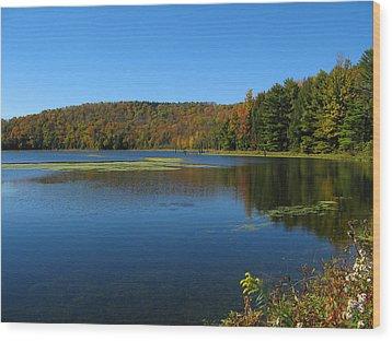 Serene Lake In Fall Wood Print by Leontine Vandermeer