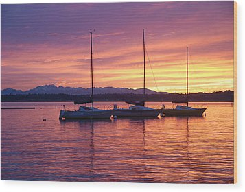 Serene Sunset Wood Print