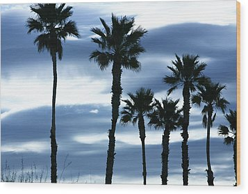 Seven Palms Wood Print by Gilbert Artiaga