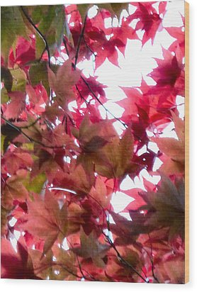 Shades Of Autumn Wood Print by Debra Collins