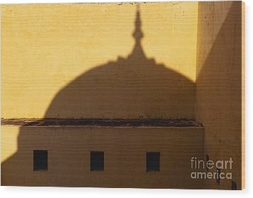 Shadow Cast On The Amber Fort Wood Print by Inti St. Clair