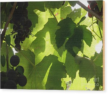 Shadow Dancing Grapes Wood Print by Lainie Wrightson