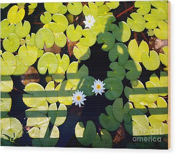 Wood Print featuring the painting Shadow Lilies by Gretchen Allen