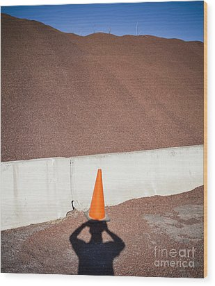 Shadow Of A Photographer Taking Picture Wood Print by Paul Edmondson