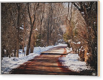 Wood Print featuring the photograph Shadowy Path by Lisa  Spencer