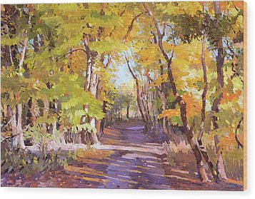 Shady Path At Fall In The Woods Wood Print