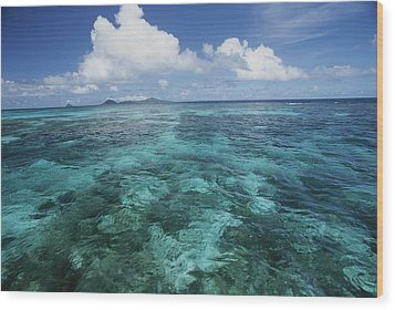 Shallow Blue Water Stretches Wood Print by Michael Melford