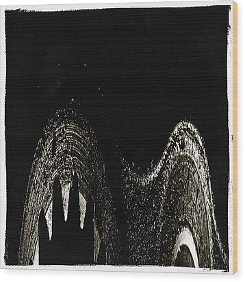 Sharp Wood Print by Skip Nall