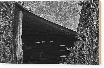 Wood Print featuring the photograph Shed Between Two Oaks Near Alexandria by Louis Nugent