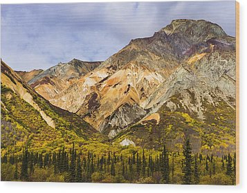 Sheep Mountain Along Glenn Highway Wood Print by Yves Marcoux