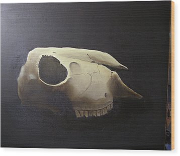 Sheep Skull Wood Print