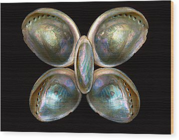 Shell - Conchology - Devine Pearlescence Wood Print by Mike Savad