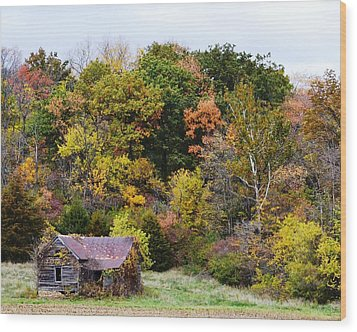 Shelter In The Fall Woods Wood Print
