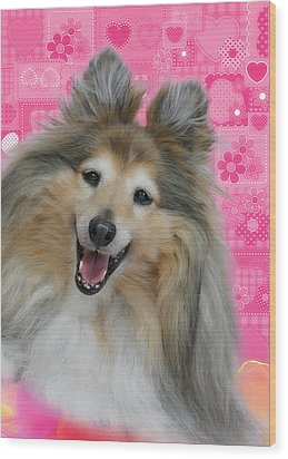 Sheltie Smile Wood Print by Christine Till