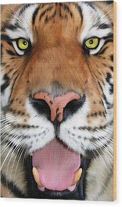 Sherekhan Wood Print by Big Cat Rescue