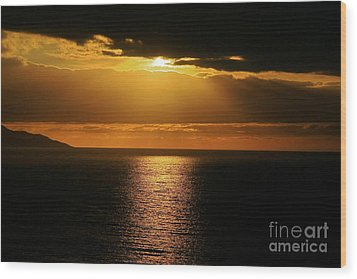 Wood Print featuring the photograph Shining Gold by Nicola Fiscarelli