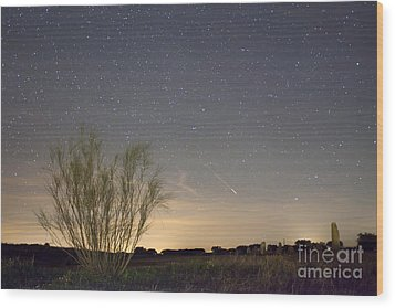 Shooting Star Wood Print by Andre Goncalves