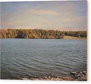 Shoreline Wood Print by Jai Johnson