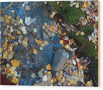 Shorelines - Campbell Creek Wood Print