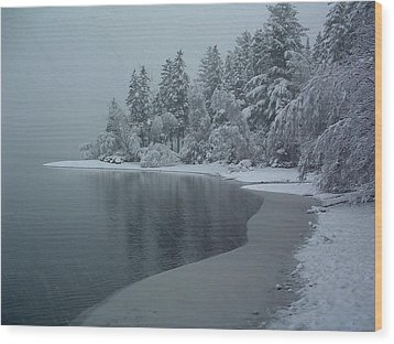 Shorelines Lumsden Pond Reduced Visibility Wood Print