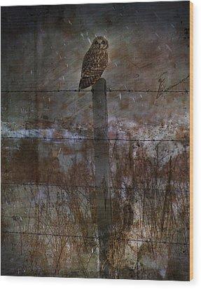 Short Eared Owl Wood Print by Empty Wall
