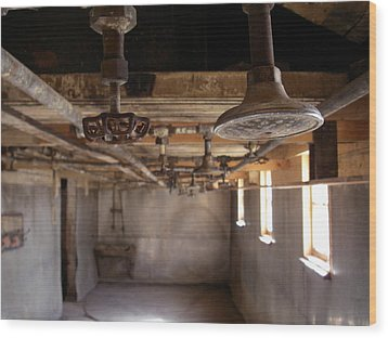 Wood Print featuring the photograph Showers Coalmine by Brian Sereda