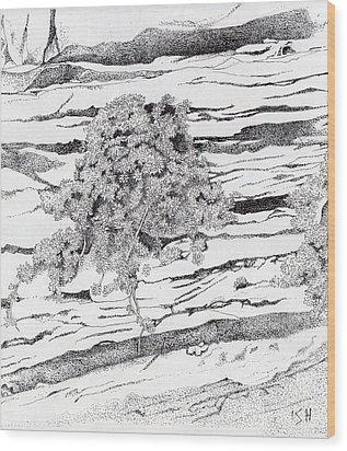 Shrub In Sedimentary Rock Wood Print by Inger Hutton
