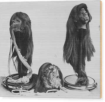 Shrunken Heads Wood Print by Kirby