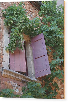 Shutters And Grapevines Wood Print by Sandra Anderson