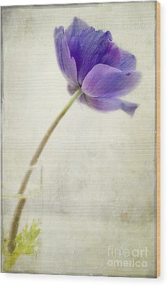 Shy Anemone Wood Print by Marion Galt
