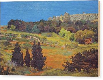 Sicily Landscape Wood Print by Judith Barath