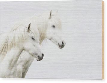 Side Face Of Two White Horse Wood Print by Gigja Einarsdottir