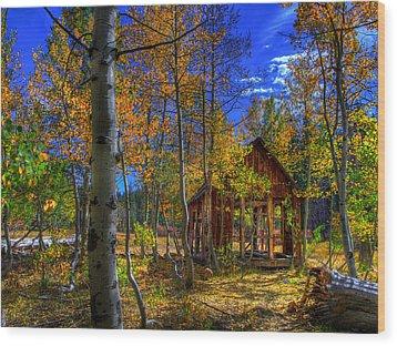 Sierra Nevada Fall Colors Barn Wood Print by Scott McGuire