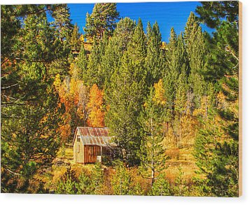 Sierra Nevada Rustic Americana Barn With Aspen Fall Color Wood Print by Scott McGuire