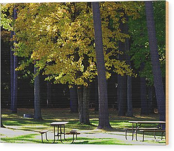 Silence In The Park Wood Print by Ms Judi