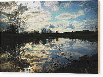 Silence Of Worms Wood Print by Jerry Cordeiro