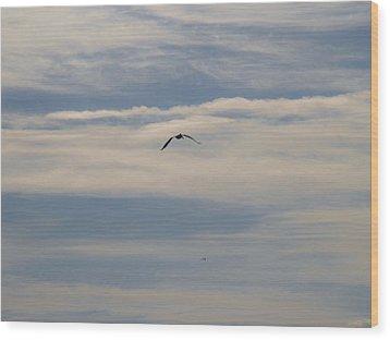 Silent Flight Wood Print by E Luiza Picciano