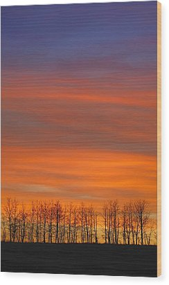 Silhouette Of Trees Against Sunset Wood Print by Don Hammond