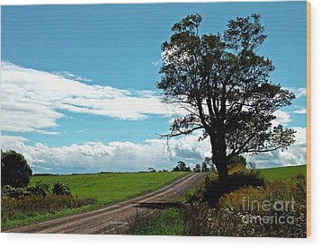 Wood Print featuring the photograph Silhouette On A Country Road by Christian Mattison