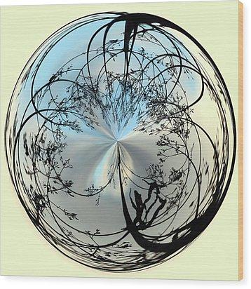 Silhoutte Orb Wood Print