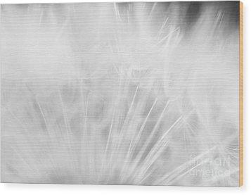 Silky Softness Wood Print